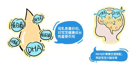 2019豆奶粉销量排行榜_2017中国奶粉10强排行榜,哪种奶粉宝宝最爱喝