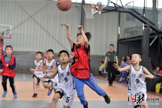 5月1日,参加2018中国小篮球联赛石家庄赛区U10组比赛的小选手们正在进行比赛。 当日,2018中国小篮球联赛石家庄赛区比赛落幕,共有32支队伍、160余名小选手参加了U8和U10两个组别的比赛,最终有8支队伍获得省级赛资格。省级赛将在6月份进行。 记者耿辉摄影报道