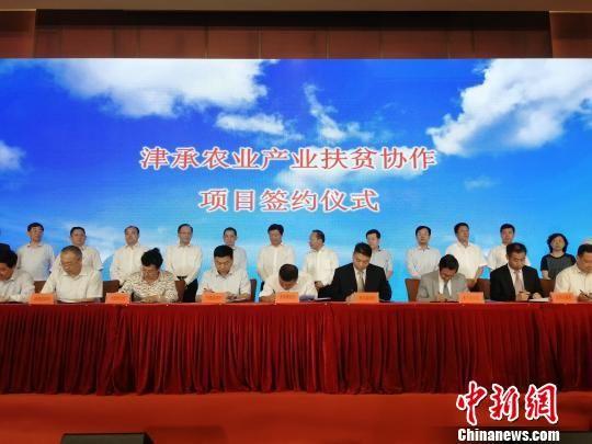 津承农业产业扶贫合作项目签约仪式 张桂芹 摄