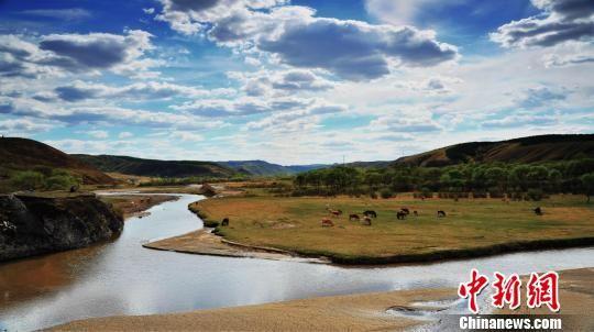 图为永太兴疏林草原生态旅游示范区景色。河北旅投供图