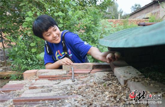 8月1日,王心仪在自家鸡窝里掏鸡蛋。 记者赵杰 霍艳恩摄