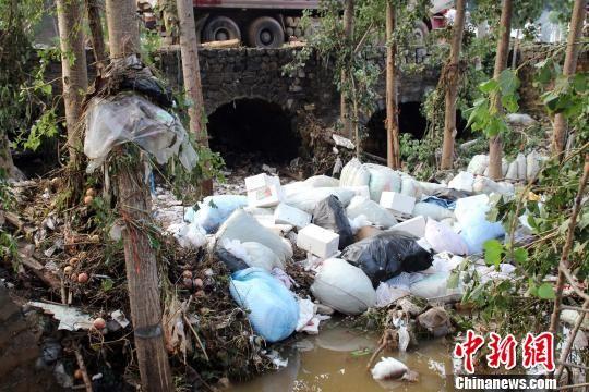被树木及垃圾堵塞的河道。 赵庆斌 摄