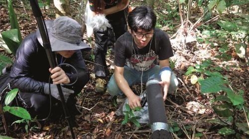 李星宇(右)跟同伴在亚马逊森林采集蚂蚁的声音。图/受访者提供
