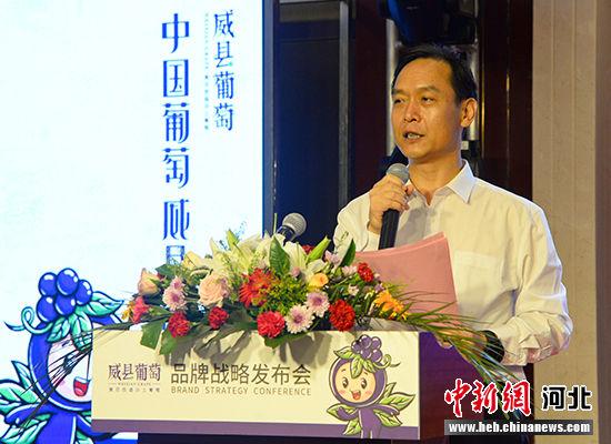 威县县委书记安庆杰推介威县葡萄。