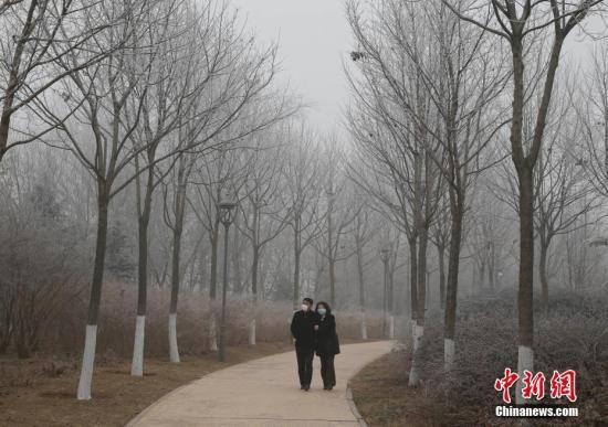 资料图:北京市民在雾霾天气下散步。 中新社记者 刘关关 摄