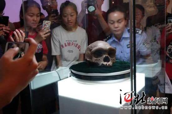 9月12日,河北地质大学展示了该校科学家发现的似海德堡人头颅化石。图为师生代表观看似海德堡人头颅化石。记者马利摄
