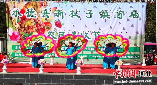 农民跳起自编自导的舞蹈庆祝丰收节。 张桂芹 摄