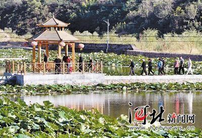 9月29日拍摄的平山县南文都村荷塘。该村实行村企参股共建模式,将臭水沟改造成了荷塘景观项目,搞起了生态养殖。记者赵永辉 张昊摄