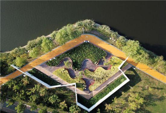 黄骅:城市荒地变身生态公园