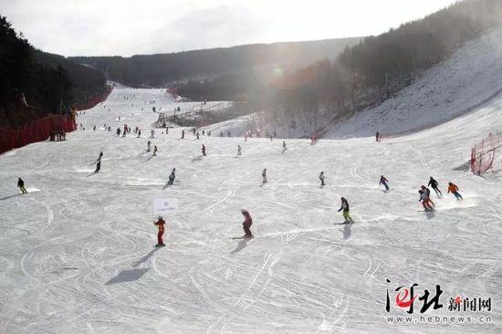 11月17日至18日,北京1031滑雪俱乐部举办2018/2019滑雪季开板大会。图为北京竞技滑雪青少年组成的50人团队滑雪表演。 1031俱乐部供图