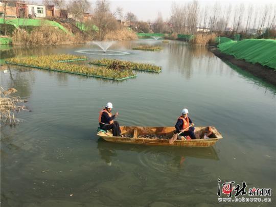安新县东角村村东坑塘完成治理后美景如画。记者张伟亚摄