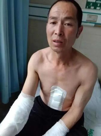 小菲家 澎湃新闻记者 朱莹 图