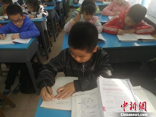 在学校认真写作业的小学生们。 王鹏 摄
