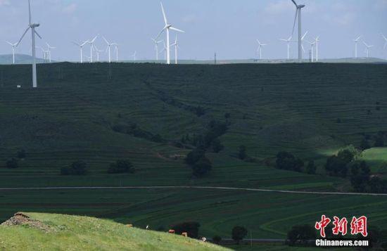 """6月28日,河北张家口张北草原上大片风力发电的""""风车""""规模宏大。 中新社记者 杨艳敏 摄"""