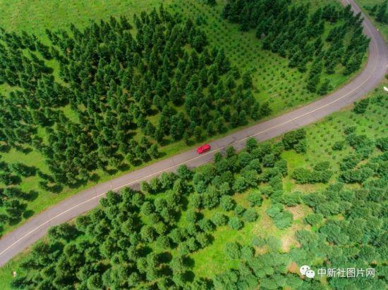 6月28日,一辆红色越野车行驶在草原天路上。中新社记者 骆云飞 摄