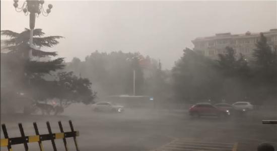 裕华路与青园街交口。视频拍摄:见习记者许佳奇