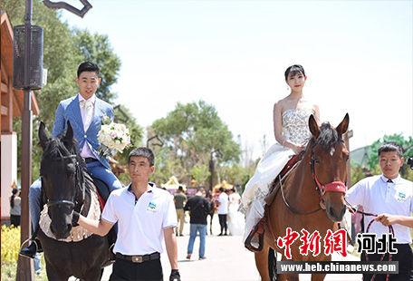马背上的集体婚礼。 张桂芹 摄