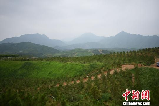 滦平县潮河流域整治后的现状 张桂芹 摄