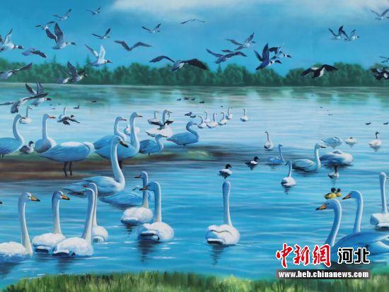 衡水滨湖新区魏家屯镇韩家庄村民墙上的鸟类彩绘。 王鹏 摄