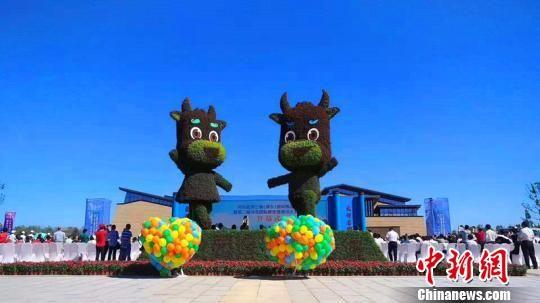 河北省第三届(邢台)园林博览会吉祥物牛牛、襄襄。 张鹏翔 摄
