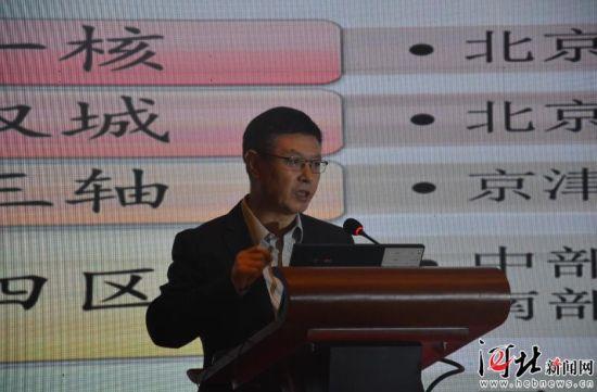 图为河北省政府参事武义青进行主旨演讲。 记者孔思远摄