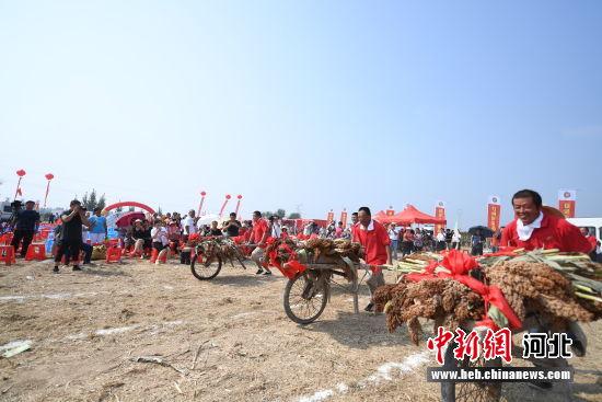 农民欢乐运动会。 供图