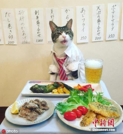资料图:日本料理。图片来源:ICphoto
