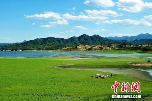今年8月份,河北省空气质量为2013年以来历史同期最好水平。 图为石家庄市柏坡湖湿地。 平山县委宣传部供图