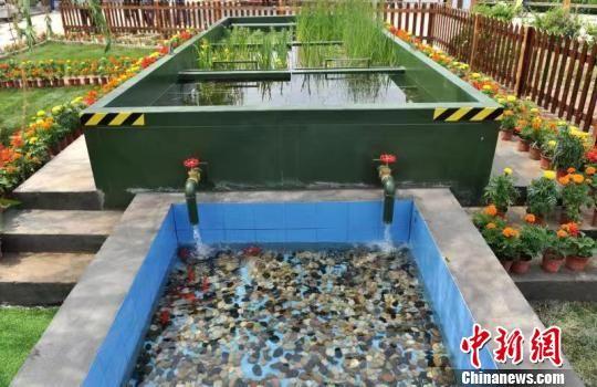 图为邵庄子村农村污水、垃圾、公厕等环境问题一体化综合系统治理先行项目展示区。经处理过的污水清澈见底。 韩冰 摄