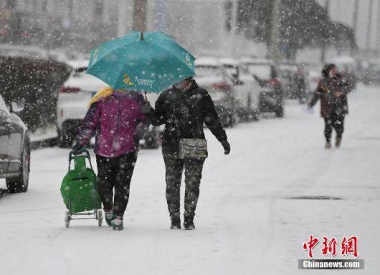 11月13日,长春市民在街头冒雪出行。 张瑶 摄