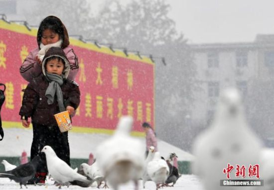 """1月5日中午,河北石家庄迎来了2020年的第一场雪。很多市民走向户外,赏雪、嬉戏。图为孩童与鸽子一起""""赏雪""""。中新社记者 翟羽佳 摄"""