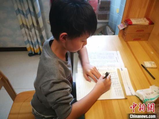 4月9日,来自河北邢台的小学生正在居家学习�!±钕� 摄