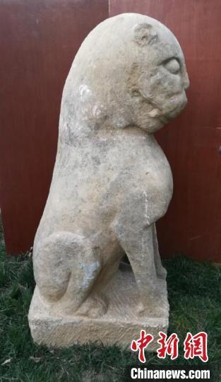 河北隆尧发现的元末明初石虎雕刻。 李铁锤 摄
