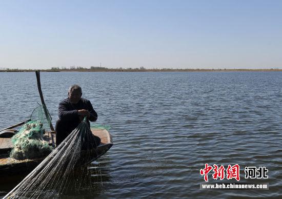 图为雄安新区安新县大淀头村水域打渔人。