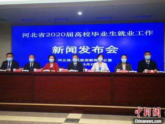 河北省2020届高校毕业生就业工作新闻发布会现场。 李晓伟 摄