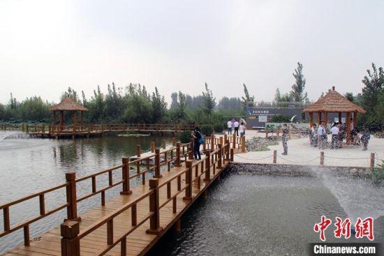 白洋淀78个淀区村均建有生活污水处理系统,做到了垃圾日产日清,污水从此不再排入白洋淀。 中新社记者 宋敏涛 摄