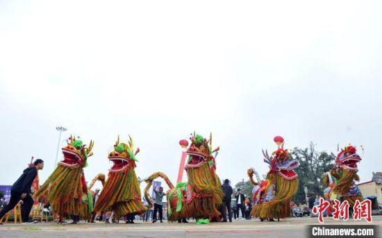 黄骅麒麟舞、沧县狮舞、任丘大鼓等非遗项目展演。 韩冰 摄