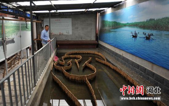 """图为杨福春亲手用芦苇编织的微缩版""""迷魂阵""""。 韩冰 摄"""