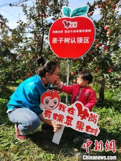 一对母女在品尝认领的苹果。 宿雅男 摄
