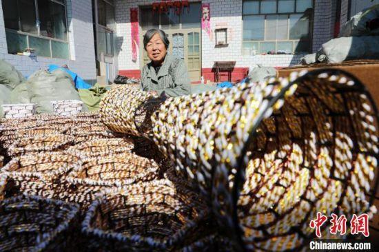 村民在平乡县霍林寨村花瓶编织脱贫小院里做工。 姚友谅 摄