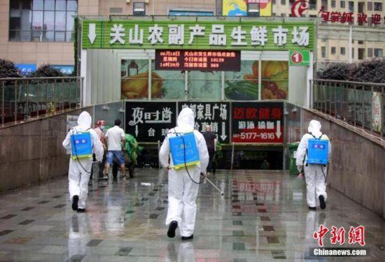 资料图:消防员进入湖北省武汉市关山农副产品生鲜市场内开展消杀作业。 王方 摄