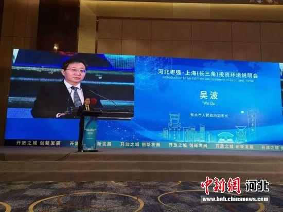 衡水市政府副市长吴波致辞。 供图