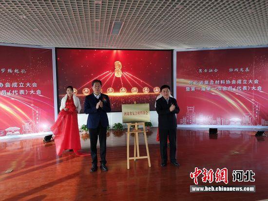 河北省復合材料協會開館儀式現場。 崔志平 攝