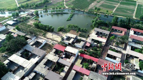 河北省巨鹿县刘家寨村。 胡良川 摄