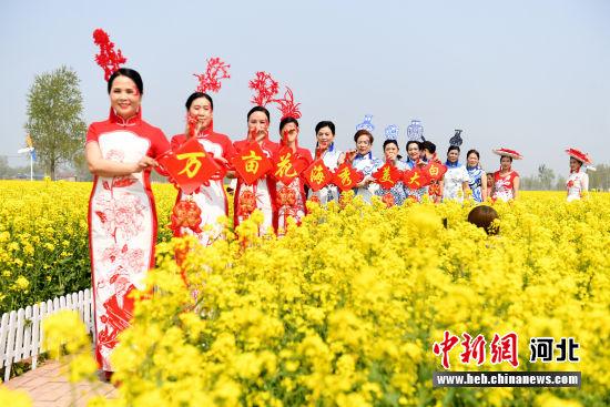 衡水阜城大白乡油菜花开喜迎八方宾客。 供图