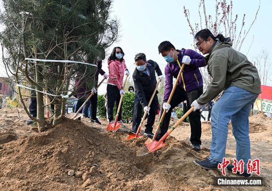 图为中华全国台湾同胞联谊会副会长杨毅周(右三)与台湾青年一同种树。中新社记者 翟羽佳 摄