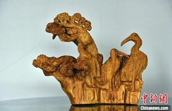 张国印的根雕作品。 宋继昌 摄