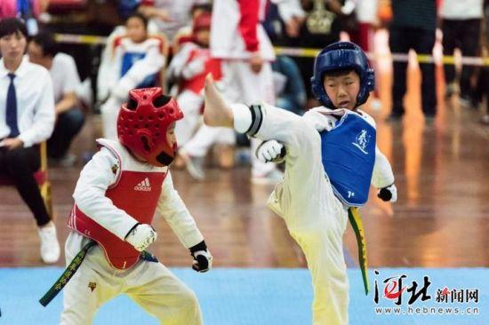 2018年京津冀青少年跆拳道大赛落幕