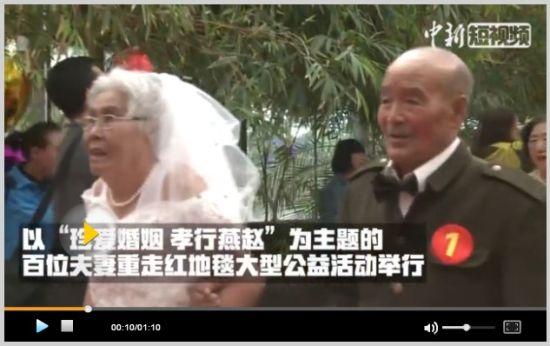 """河北50对中老年夫妻走红毯圆""""婚纱梦"""""""