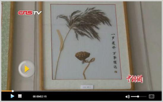 探访白洋淀芦苇画 传统民间技艺将获新生